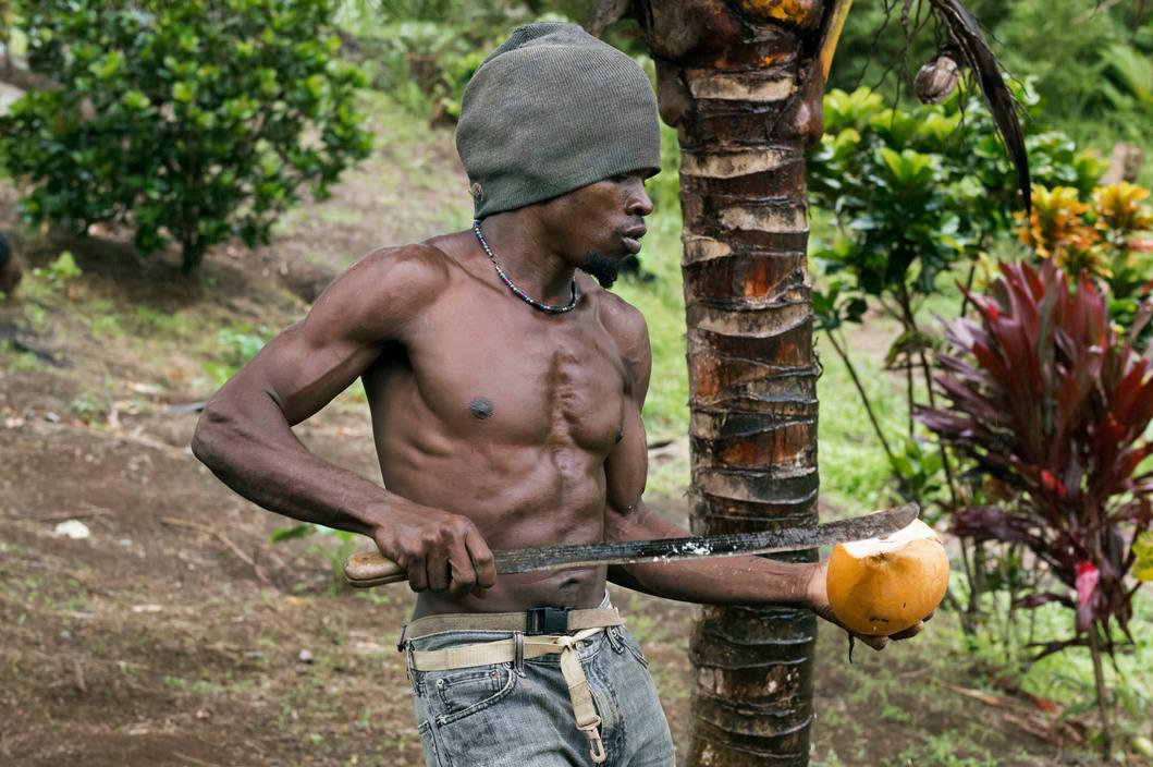 DOMINICA. Callibishie. 2014. Farmer.