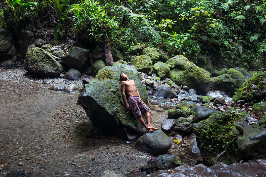 DOMINICA. Emerald Pool. 2014.