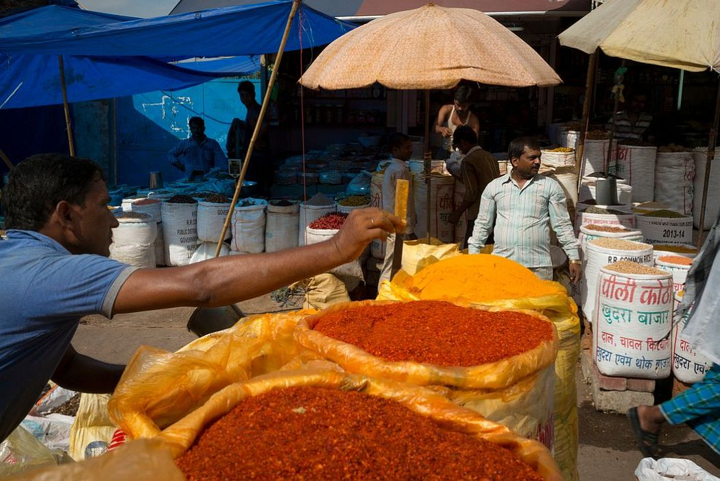 alex-webb-india-spice-04