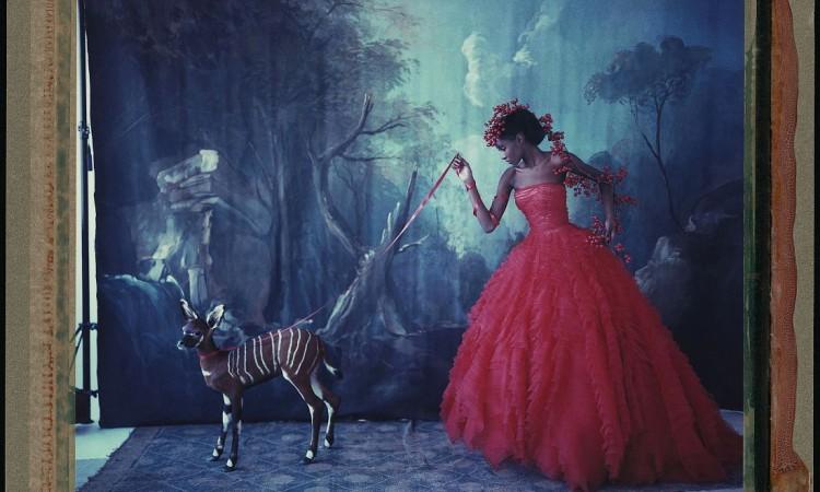 Cathleen Naundorf: Noah's Ark
