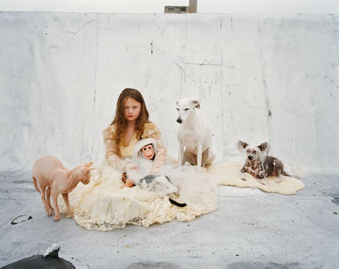 robin-schwartz-amelia-the-animals-14