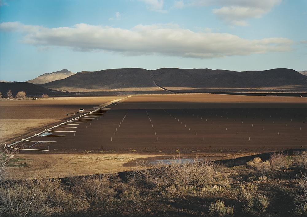 victoria-sambunaris-taxonomy-of-a-landscape-05