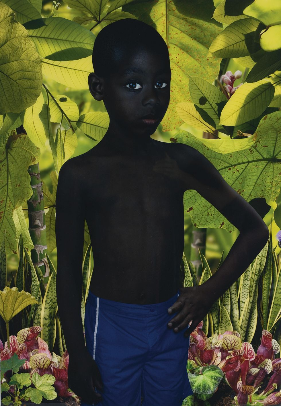ruud-van-empel-beetleshuxley-in-london-07