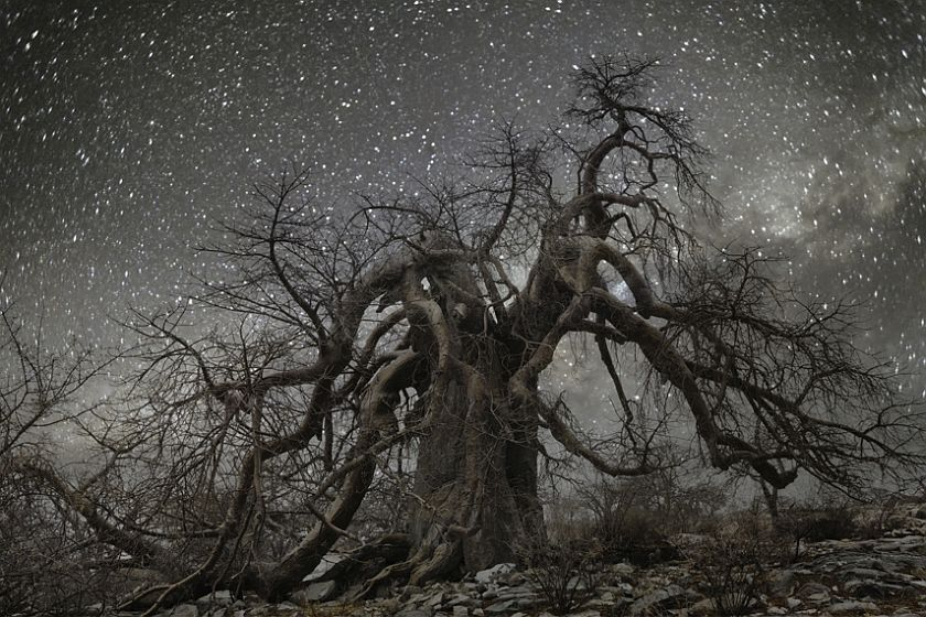 beth-moon-diamond-nights-04