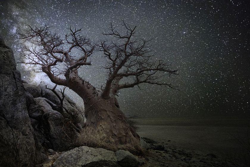 beth-moon-diamond-nights-10