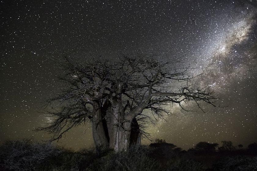 beth-moon-diamond-nights-14