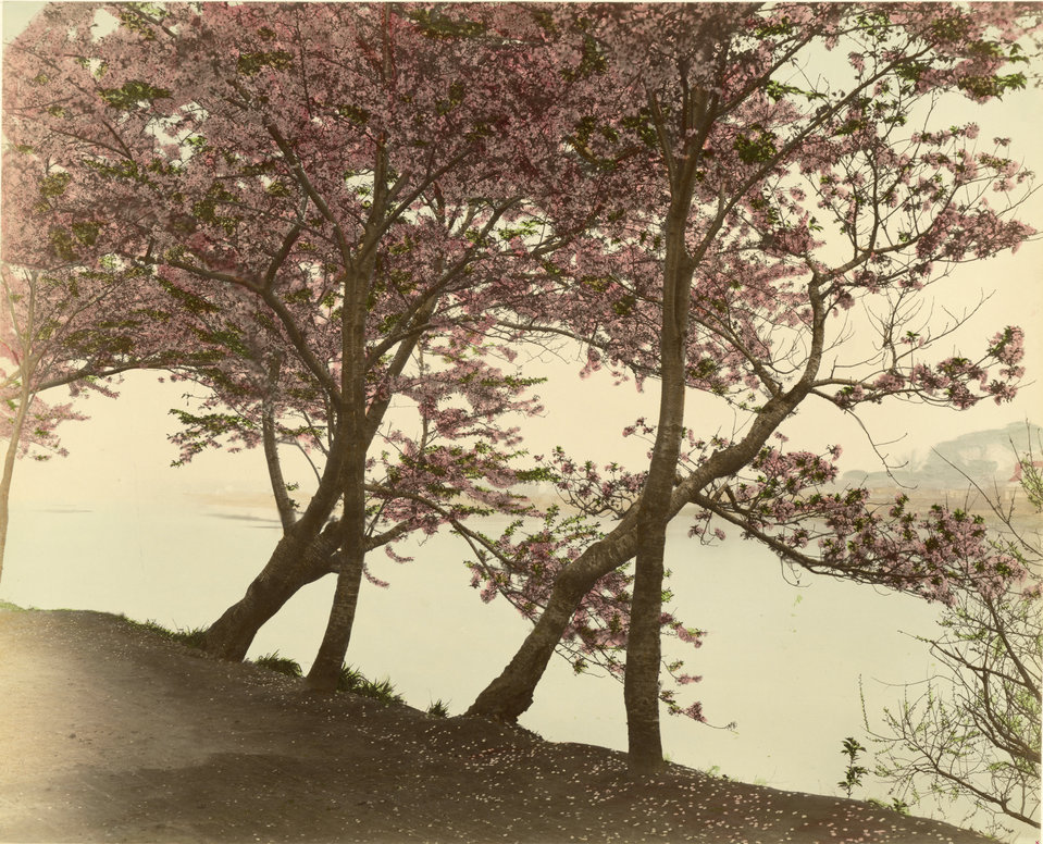 19th-century-color-photos-from-japan-07