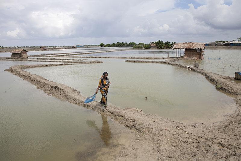 probal-rashid-climate-crisis-in-bangladesh-12