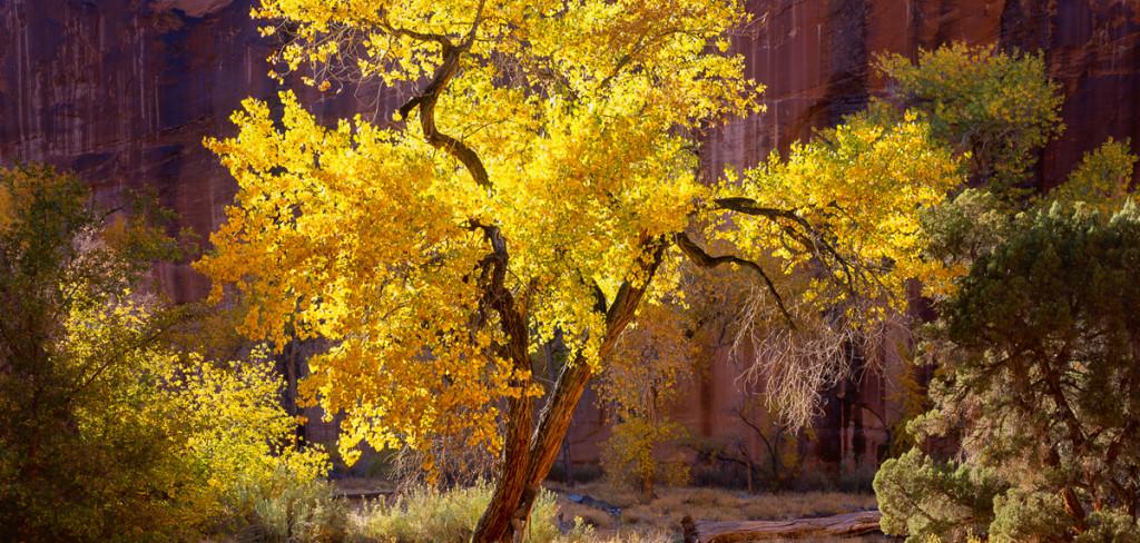 Interview with Landscape photographer Scott Walton