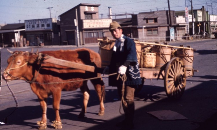 Vintage color: Everyday Life in Japan from 1949-1951