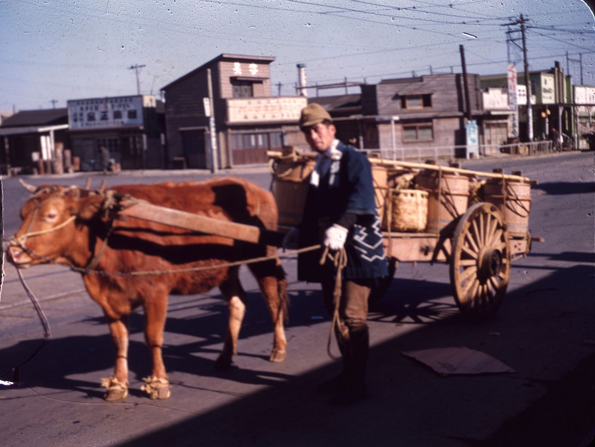 vintage-color-everyday-life-in-japan-from-1949-1951-14