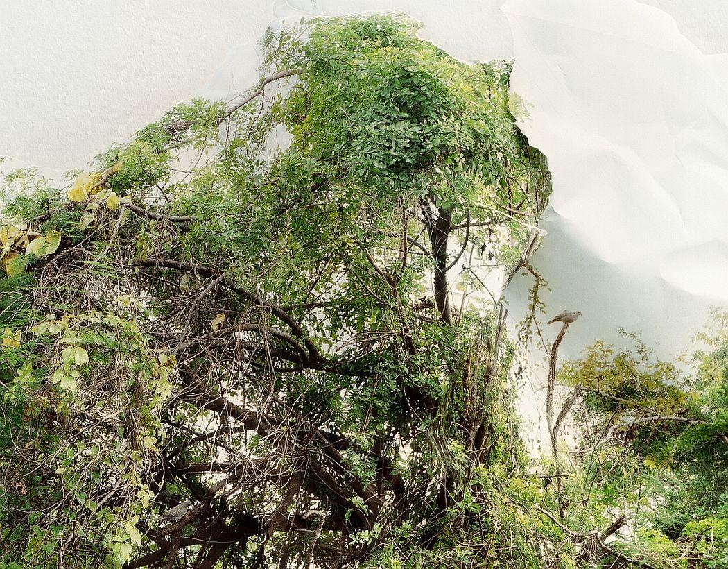 laura-plageman-coneptual-landscapes-12
