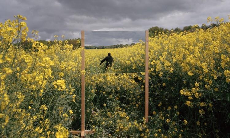Guillaume Amat: Open Fields – Mirror Landscapes