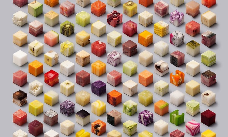 Lernert & Sander: Cubes – Perfectly Organized Raw Foods