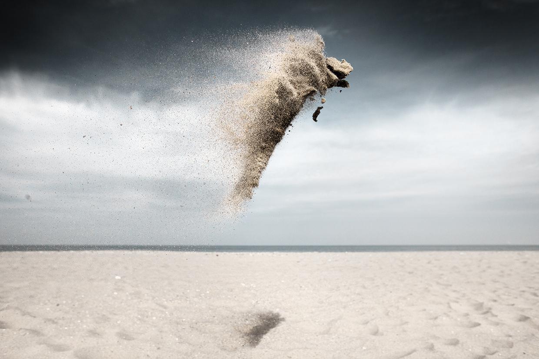Sand Creatures © Claire Droppert