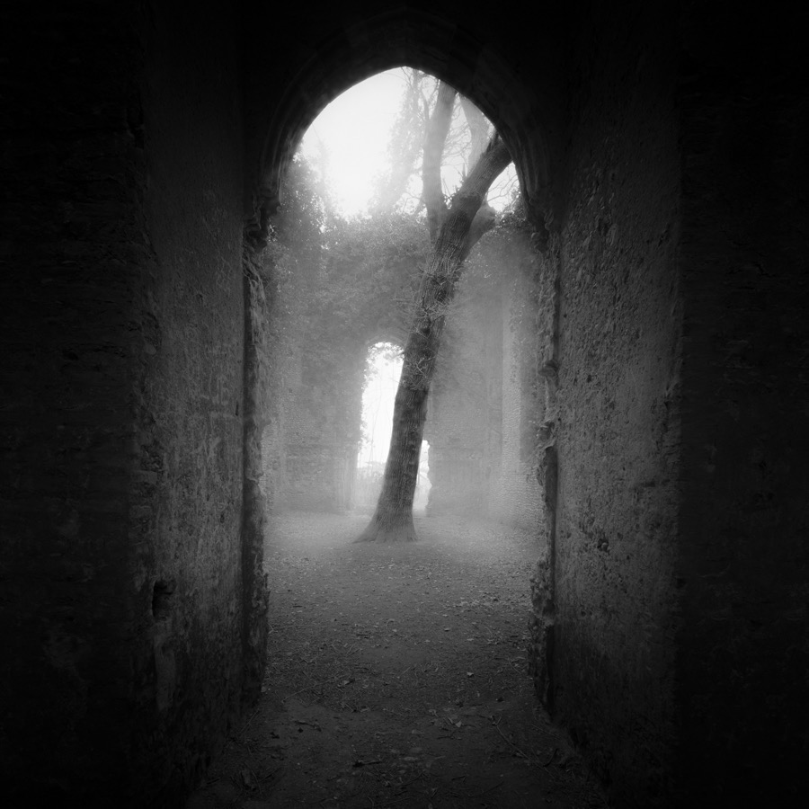 Within by Darren Moore