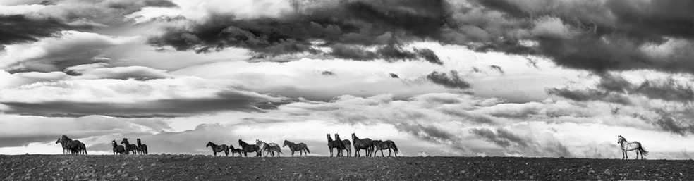 © Eliseo Miciu