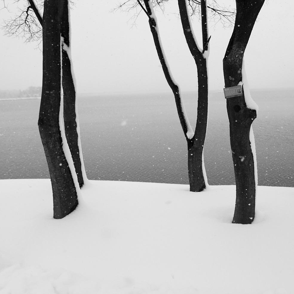 © Namdon Kim