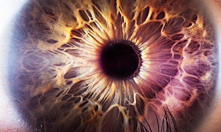 Suren Manvelyan: Eyes
