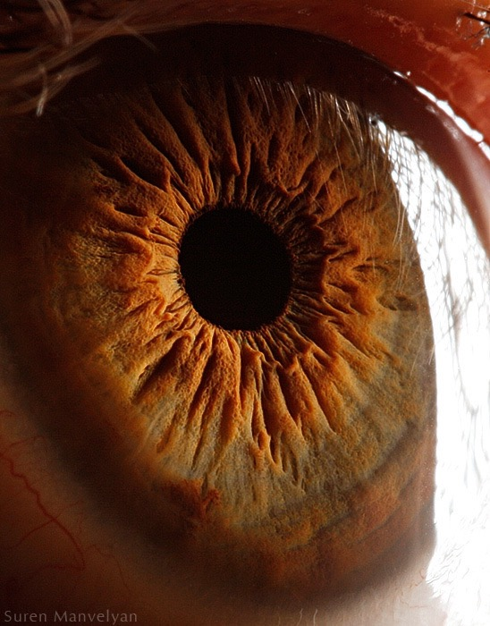 Suren_Manvelyan-Eyes-Photogrvphy_Magazine_10