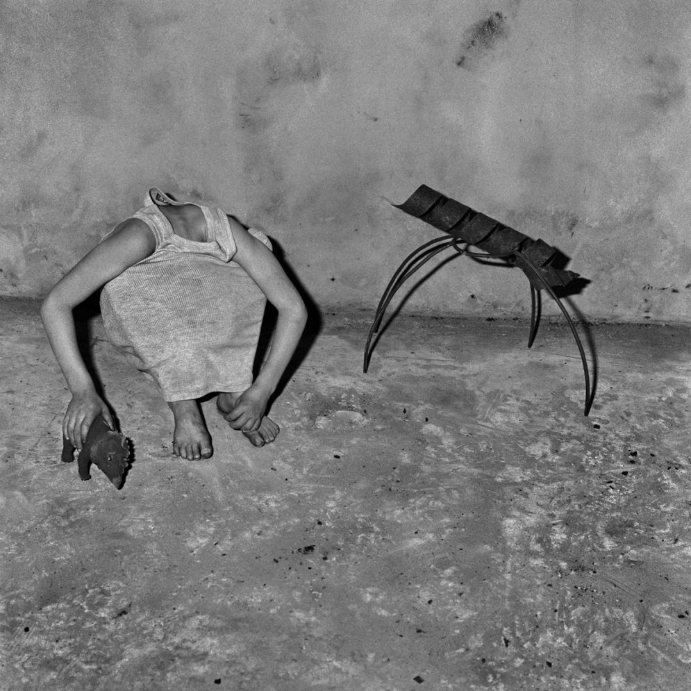 Animal Abstraction © Roger Ballen