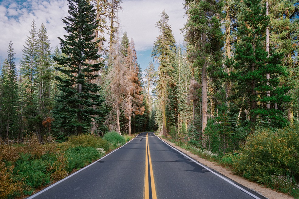 Yosemite National Park (USA)