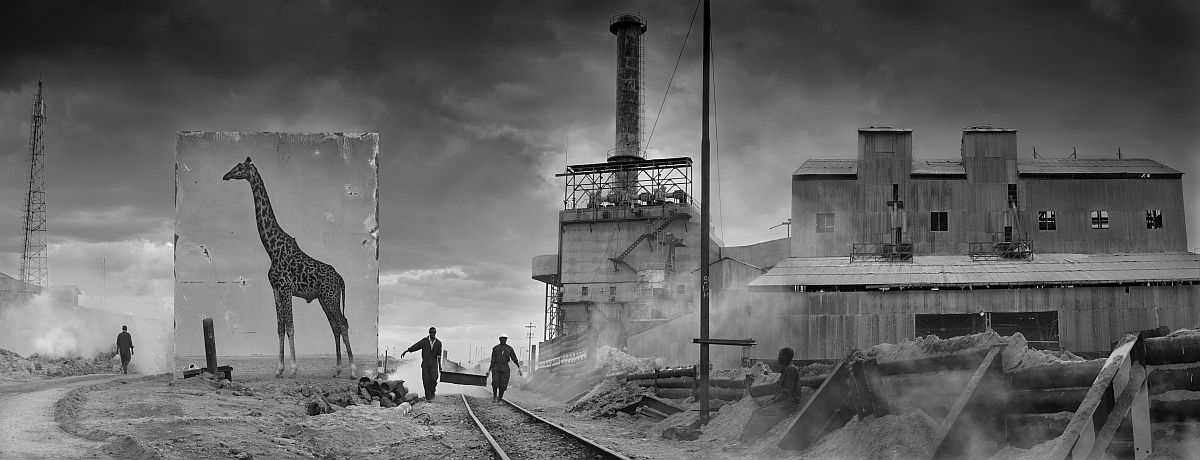 © Nick Brandt: Inherit the Dust