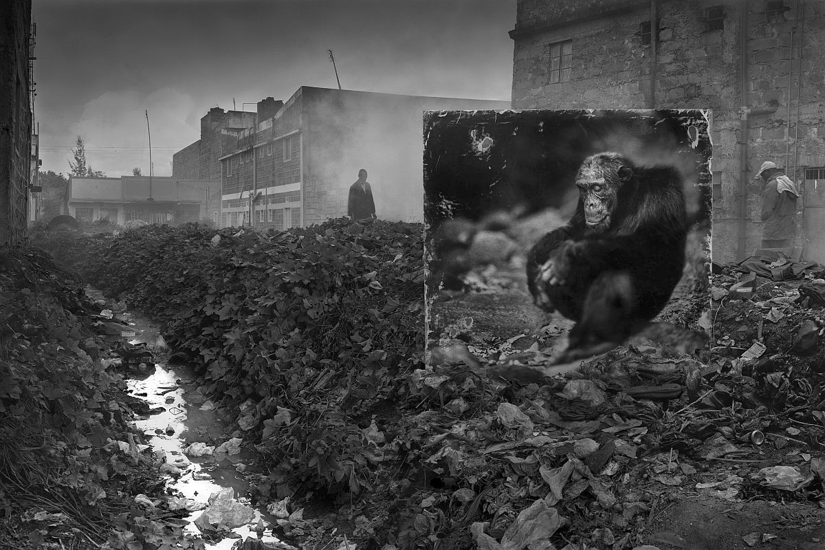 © Nick Brandt: Inherit the Dust