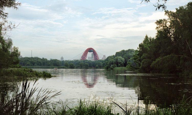 Julia Abzaltdinova: Noise in the Park