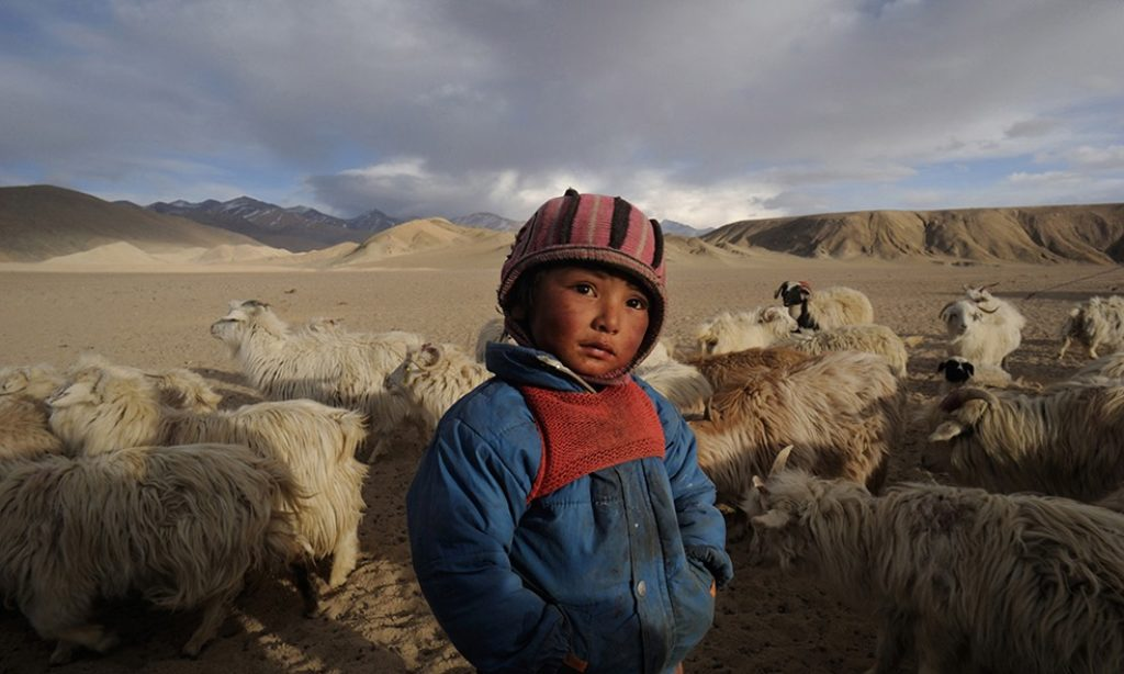 Joydip Mitra: Losing Horizon – The Changpa Nomads of Trans-Himalayan India