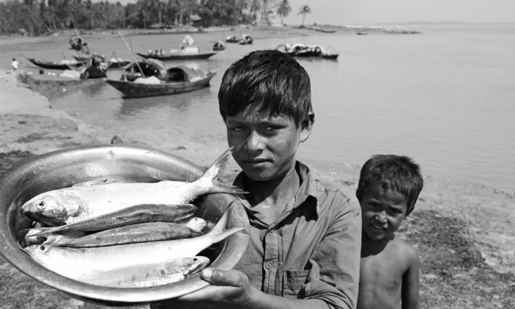 Momo Mustafa: River Erosion
