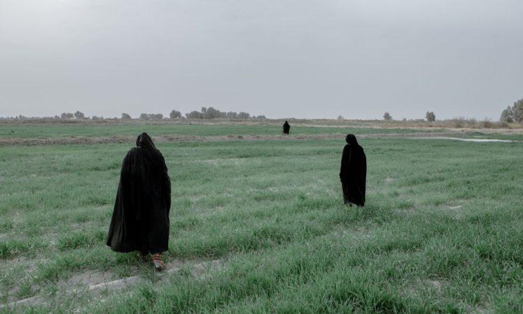 Solmaz Daryani: Hamoun Wetland to Wasteland
