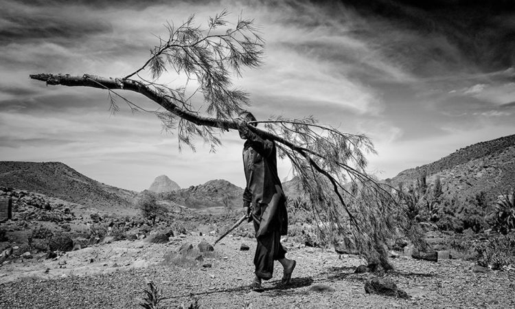 Mohammad Baghal Asghari: Forgotten Dried Land