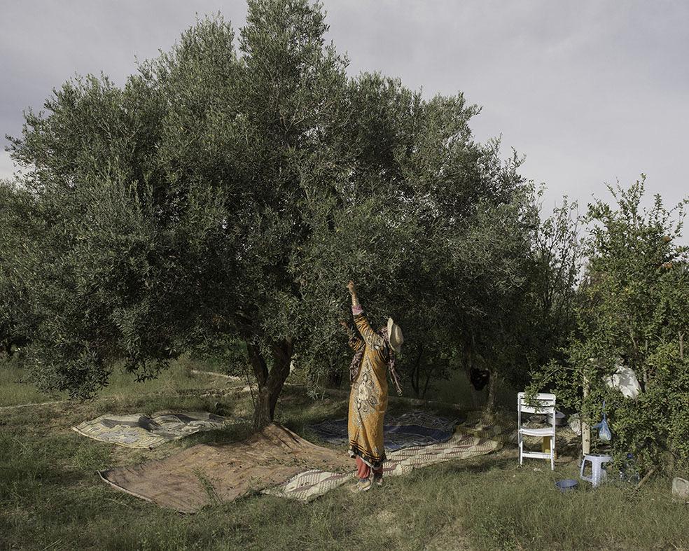 The Rahmeni Family © Enrico Doria