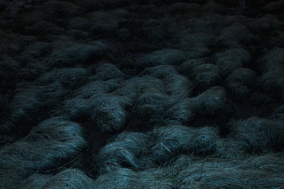 Asatru - Renewal © Alisa Ganzharova