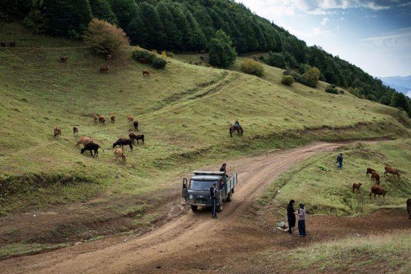 The Final Days of Georgian Nomads © Natela Grigalashvili