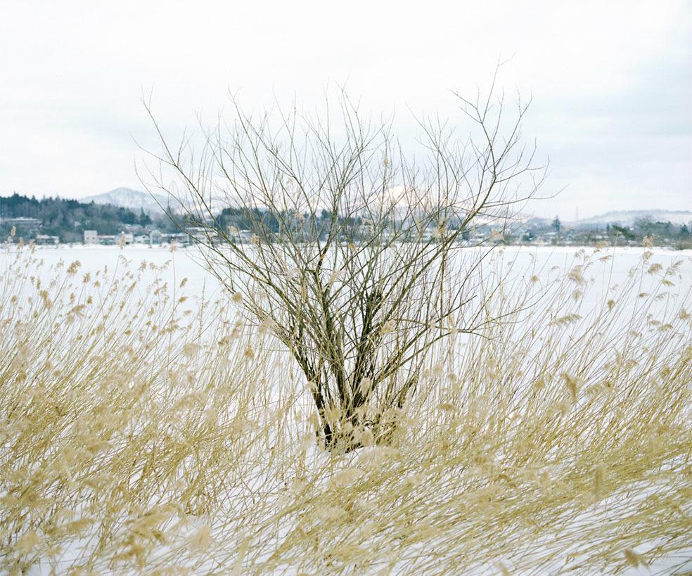 Wintertag Masato © Ninomiya