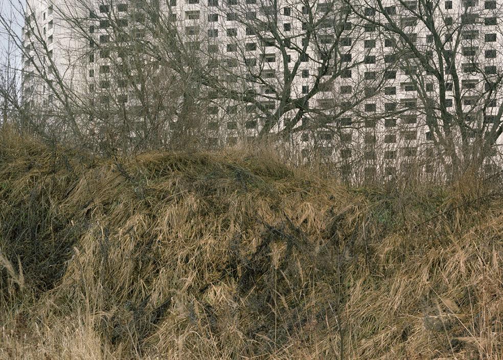 Oseyev © Vladimir Seleznev