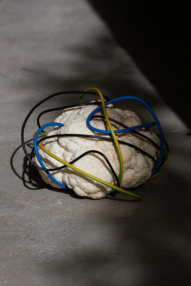 Brain Matters © Eszter Papp