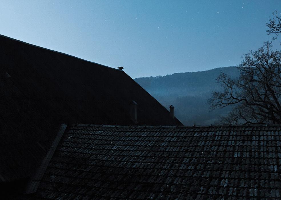 Deserted Village © Adam Żądło
