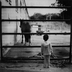 Petrichor © Xiaopeng Liu