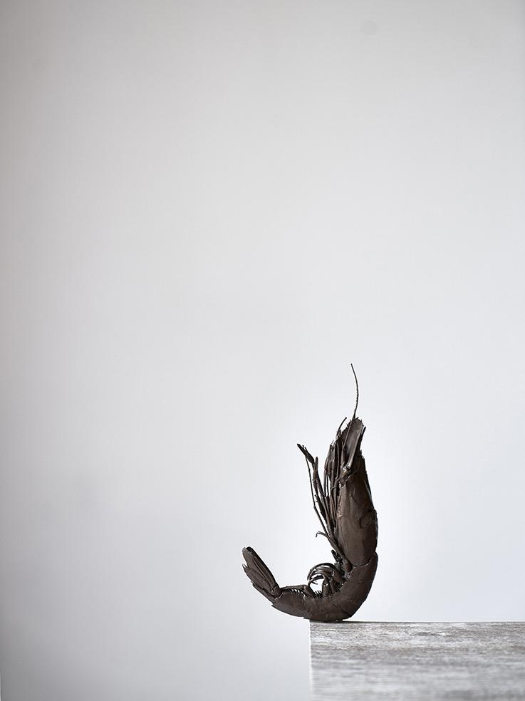 Origin © Ana Ferrandiz