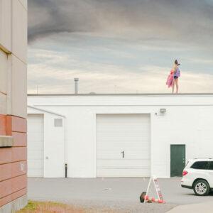 When the Trees are Gone © Diana Cheren Nygren